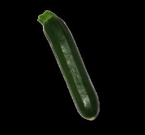 zucchina-500x463