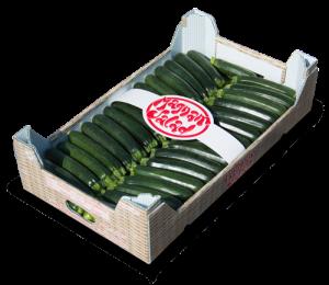 Cassetta-zucchine-piccole-500